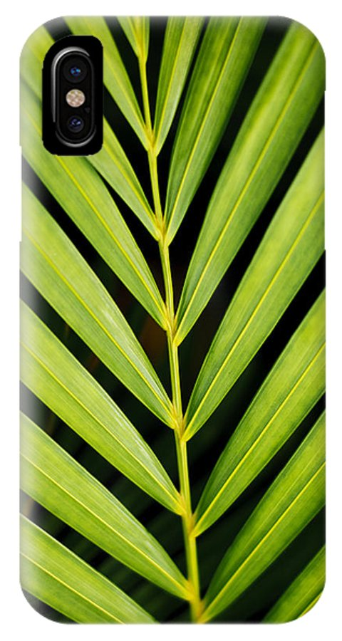 Beautiful IPhone X Case featuring the photograph Tropical Palm Frond by MakenaStockMedia - Printscapes