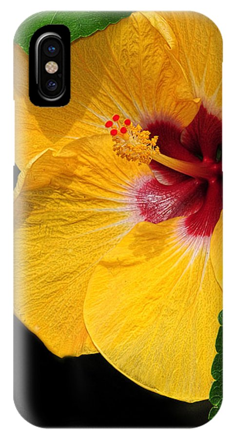 Hibiscus IPhone X Case featuring the photograph Yellow Hibiscus by Dave Mills
