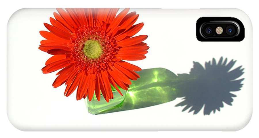 Gerbera Photographs IPhone X Case featuring the photograph 2002a1 by Kimberlie Gerner