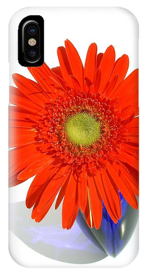Gerbera Photographs IPhone X Case featuring the photograph 2035a1c by Kimberlie Gerner
