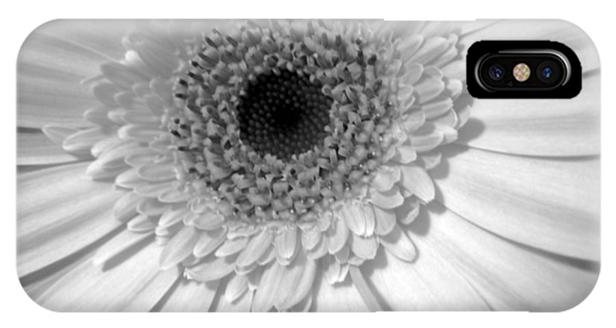 Gerbera Photographs IPhone X Case featuring the photograph 2134a2 by Kimberlie Gerner