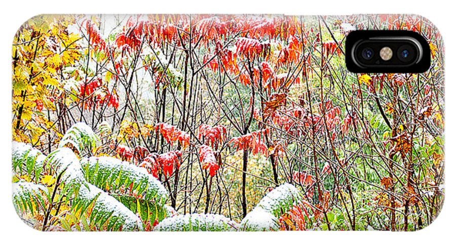 West Virginia IPhone X Case featuring the photograph Autumn Snow Monongahela National Forest by Thomas R Fletcher