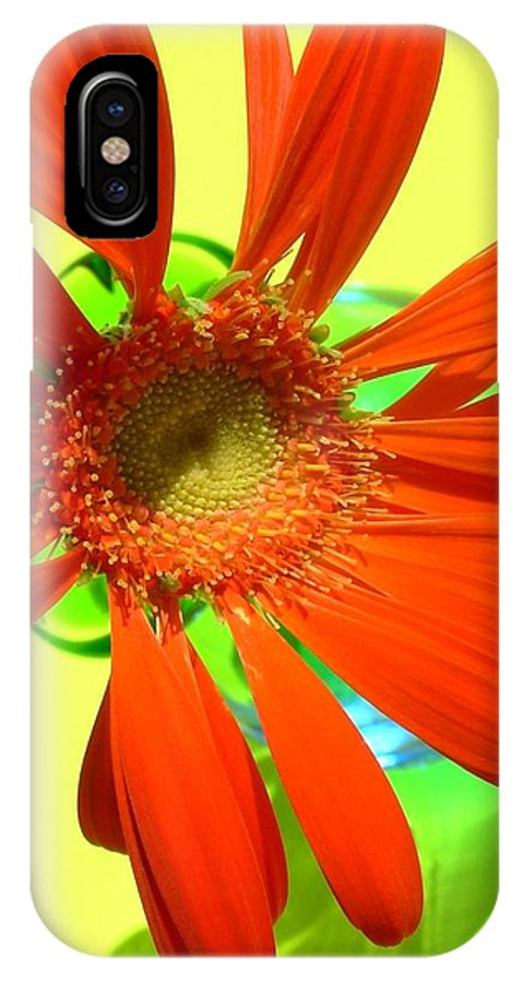 Gerbera Photographs IPhone X Case featuring the photograph 2504c-007 by Kimberlie Gerner