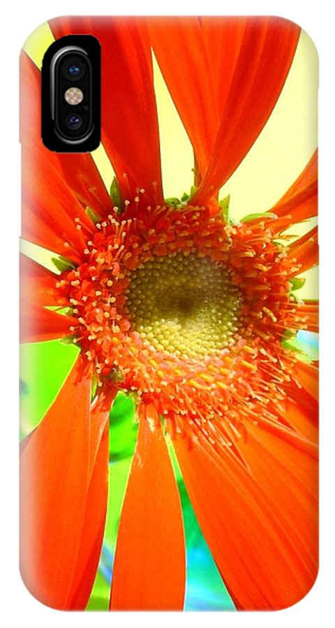 Gerbera Photographs IPhone X Case featuring the photograph 2505c1-019 by Kimberlie Gerner