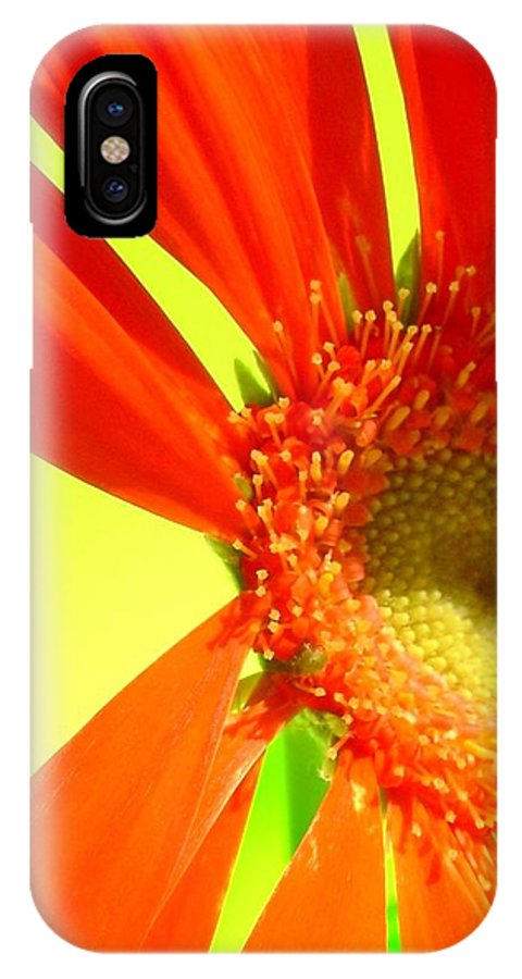 Gerbera Photographs IPhone X Case featuring the photograph 2506c1-003 by Kimberlie Gerner