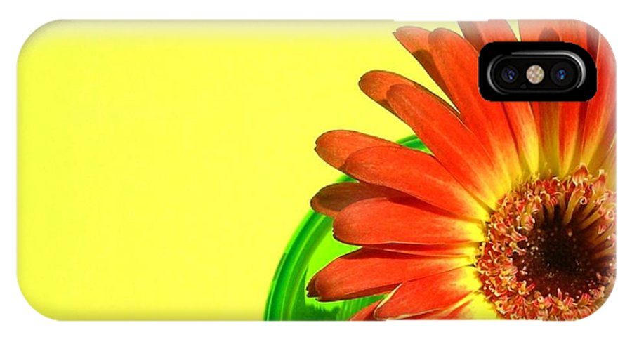 Gerbera Photographs IPhone X Case featuring the photograph 2510c-003 by Kimberlie Gerner
