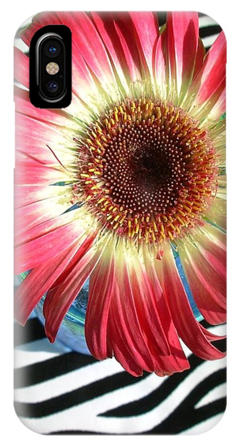 Gerbera Photographs IPhone X Case featuring the photograph 2550c1-016 by Kimberlie Gerner