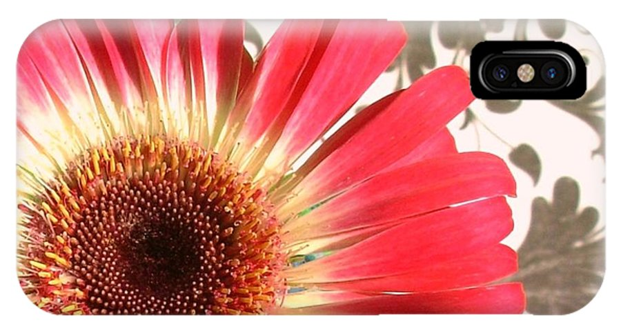Gerbera Photographs IPhone X Case featuring the photograph 2556c1-011 by Kimberlie Gerner
