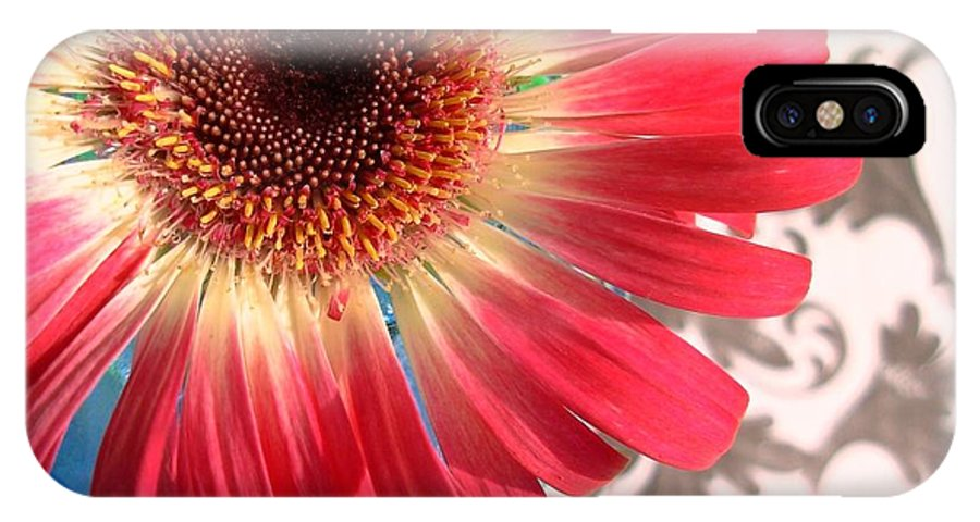 Gerbera Photographs IPhone X Case featuring the photograph 2558c1-001 by Kimberlie Gerner