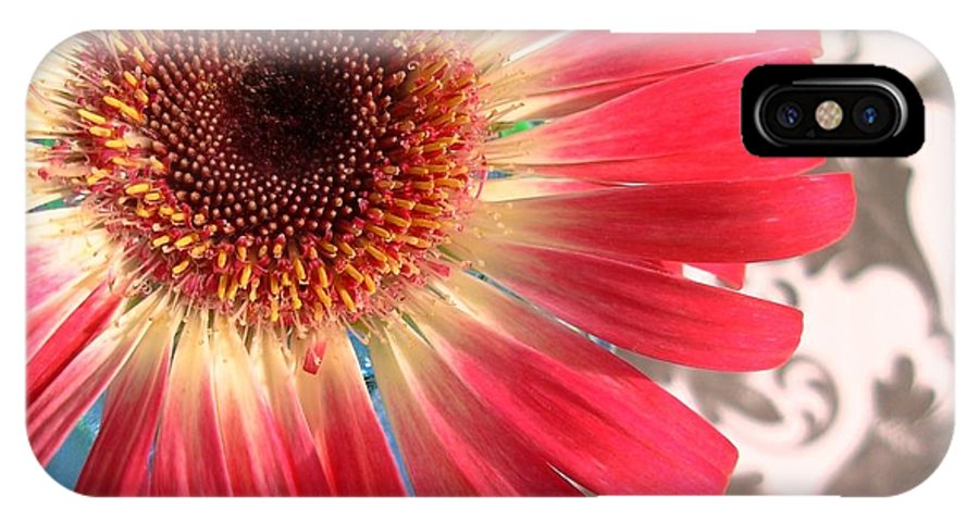 Gerbera Photographs IPhone X Case featuring the photograph 2558c1-010 by Kimberlie Gerner