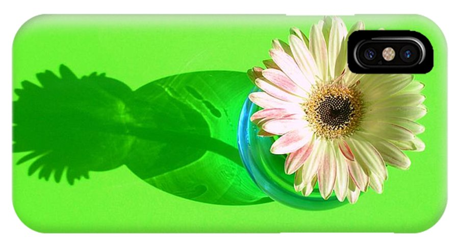 Gerbera Photographs IPhone X Case featuring the photograph 2584c1 by Kimberlie Gerner