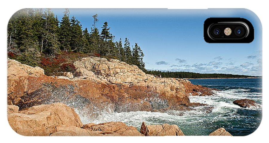 Acadia National Park IPhone X Case featuring the photograph Acadia National Park by John Greim