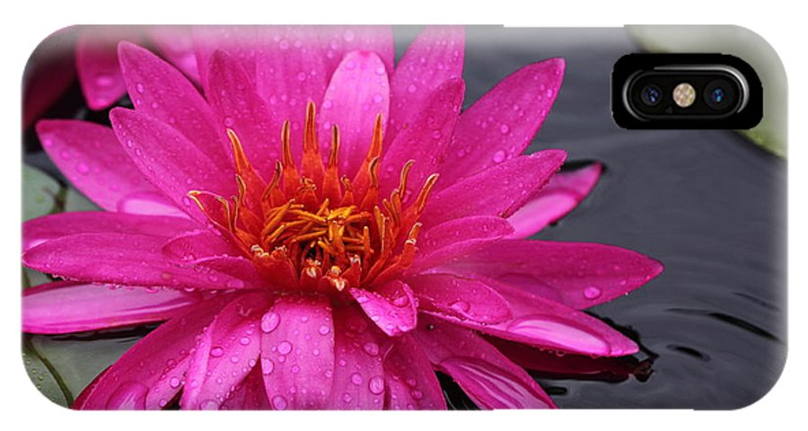 Flower IPhone X Case featuring the photograph Pink Beauty by Paul Slebodnick