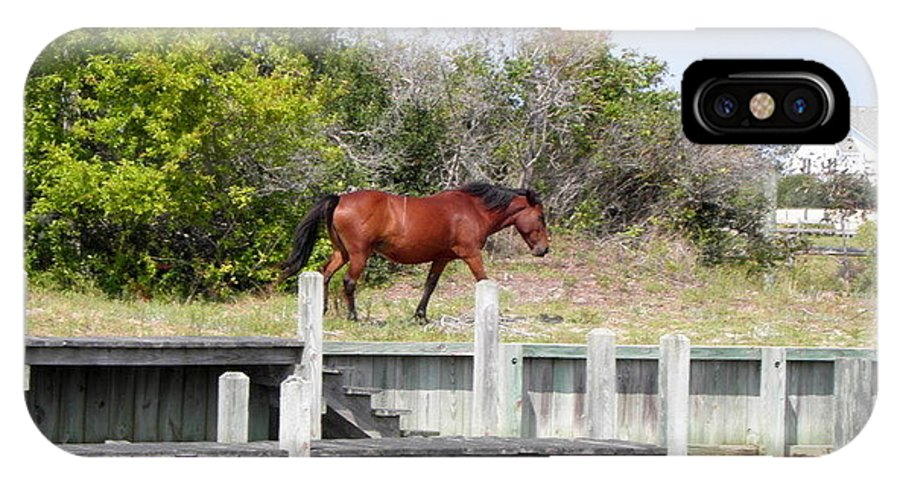 Wild IPhone X Case featuring the photograph Wild Spanish Mustangs Obx Nc by Kim Galluzzo Wozniak