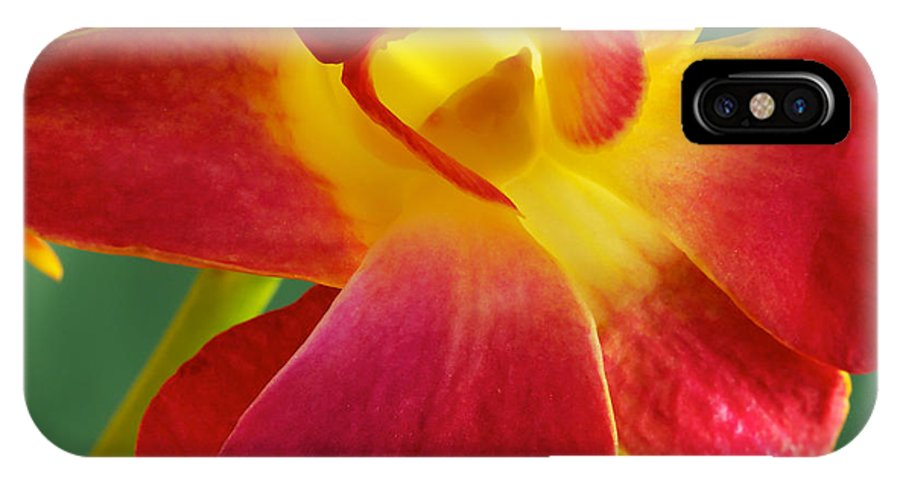 Dendrobium IPhone X Case featuring the photograph Dendribium Malone Or Hope Orchid Flower by Perla Copernik