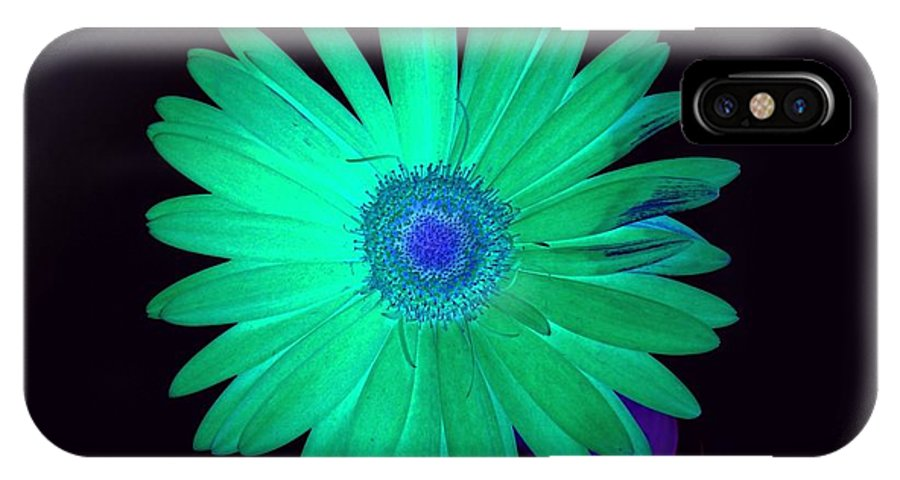 Gerbera Photographs IPhone X Case featuring the photograph 5419c4-002 by Kimberlie Gerner