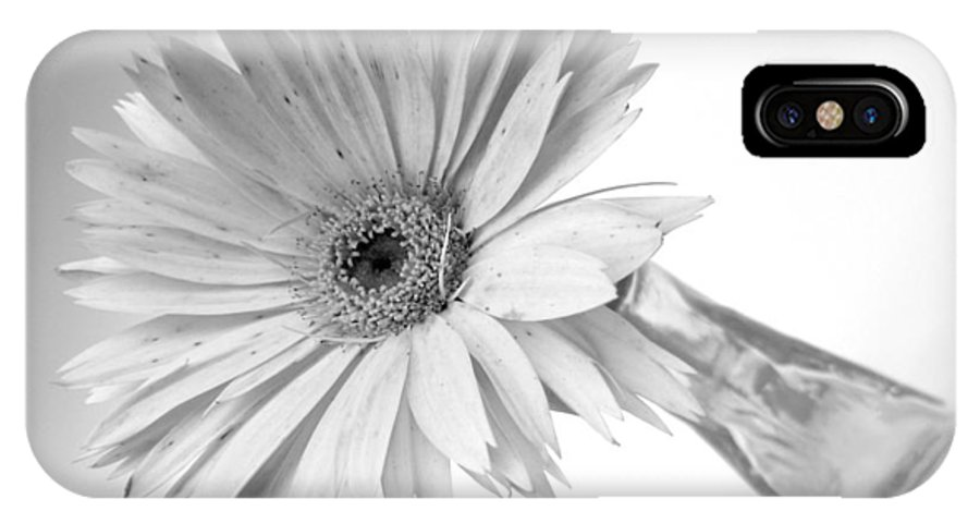 Gerbera Photographs IPhone X Case featuring the photograph 5495c3 by Kimberlie Gerner