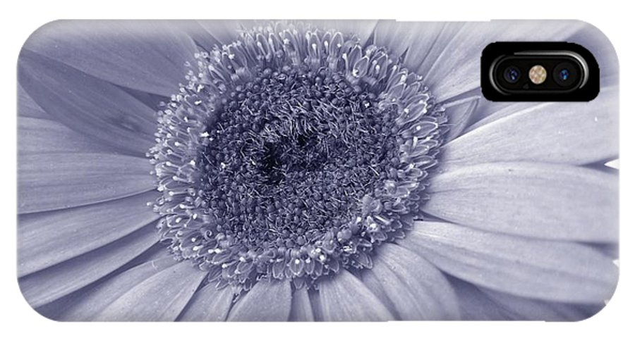 Gerbera Photographs IPhone X Case featuring the photograph 5540c8 by Kimberlie Gerner
