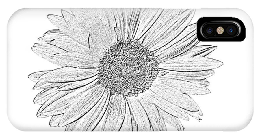Gerbera Photographs IPhone X Case featuring the photograph 5552c5 by Kimberlie Gerner