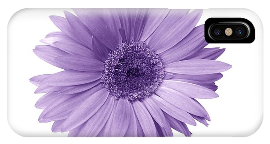 Gerbera Photographs IPhone X Case featuring the photograph 5552c6 by Kimberlie Gerner