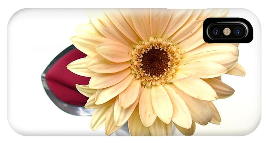 Gerbera Photographs IPhone X Case featuring the photograph 5757c1 by Kimberlie Gerner