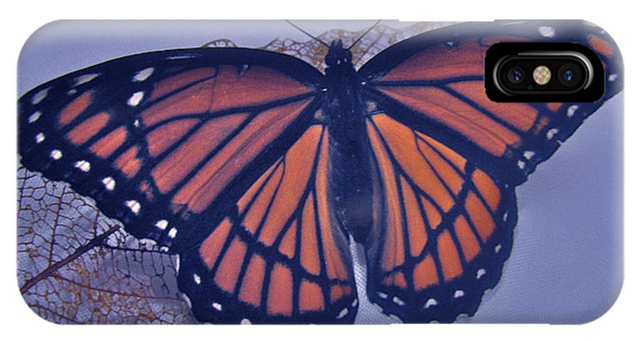Designer Butterfly Collections IPhone X Case featuring the photograph Butterfly Design Collection by Debra   Vatalaro