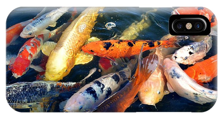 Colorful; Ornamental; Koi; Fish; Pond; Water; Red; Nishikigoi; Pattern; Spots; Eyes; Decorative; White; Scalation; Outdoor; Garden; Black; Background; IPhone X Case featuring the photograph Koi Fish by Werner Lehmann
