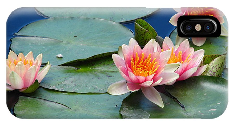 Flower IPhone X Case featuring the photograph Water Lily by Paul Slebodnick