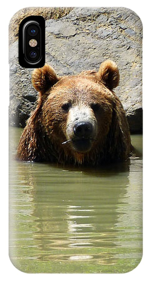 A Bear's Hot Tub IPhone X Case featuring the photograph A Bear's Hot Tub by Methune Hively