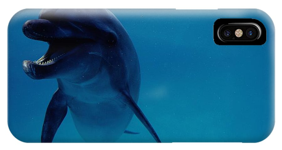 Sea Life Park Hawaii IPhone X Case featuring the photograph A Bottlenose Dolphin Swims In The Blue by Chris Johns