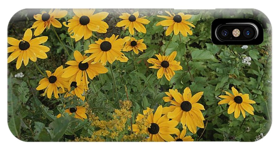 North America IPhone X / XS Case featuring the photograph A Close View Of Black-eyed Susans by Michael S. Lewis