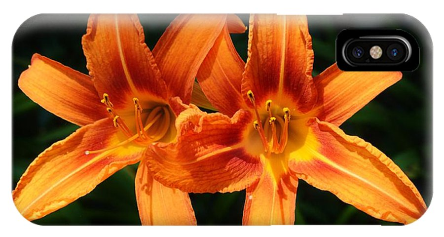 Background IPhone X Case featuring the photograph A Couple Of Beauties by William Bartholomew