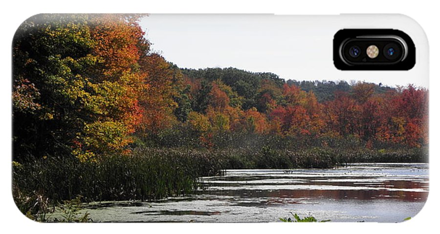 Fall IPhone X / XS Case featuring the photograph A Curve Of Color by Kim Galluzzo Wozniak