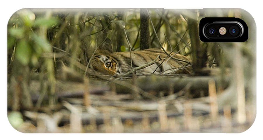 Day IPhone X Case featuring the photograph A Female Tiger Rests In The Undergrowth by Tim Laman