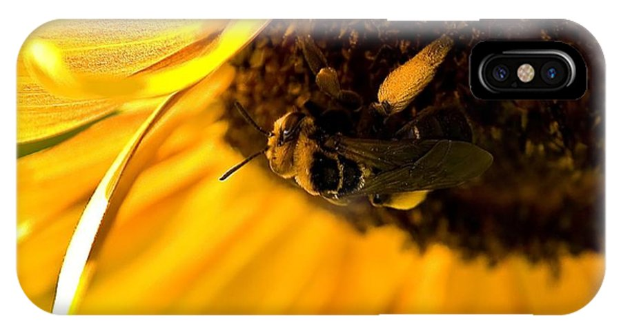 Bee IPhone X Case featuring the photograph A Full Load by Beth Phifer
