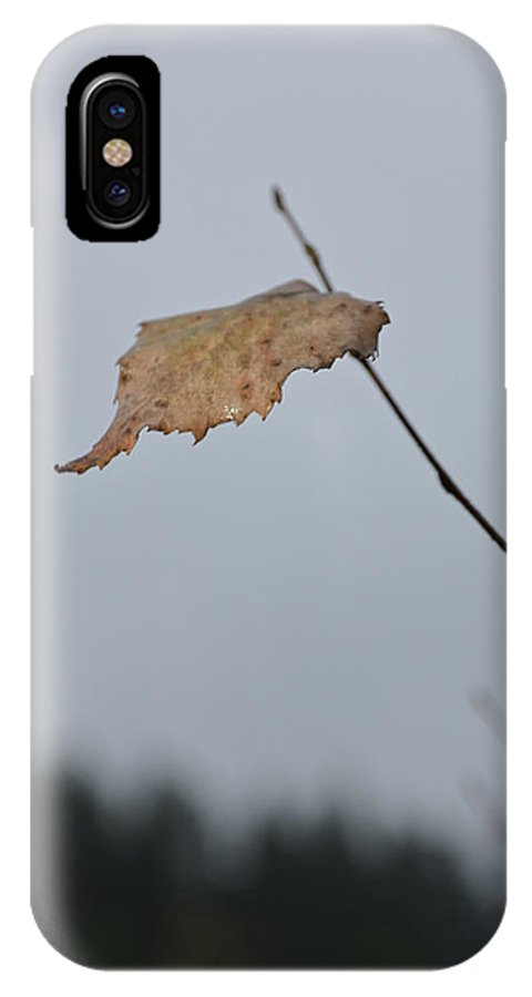 Autumn IPhone X / XS Case featuring the photograph A Lonely Leaf by Michael Goyberg