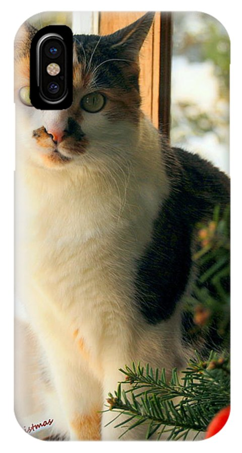 Felines IPhone X Case featuring the photograph A Pet And Christmas by Caroline Stella