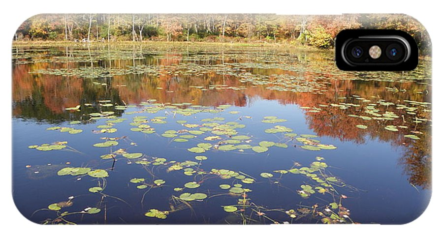 Pond IPhone X / XS Case featuring the photograph A Pond Of Reflective Beauty by Kim Galluzzo Wozniak