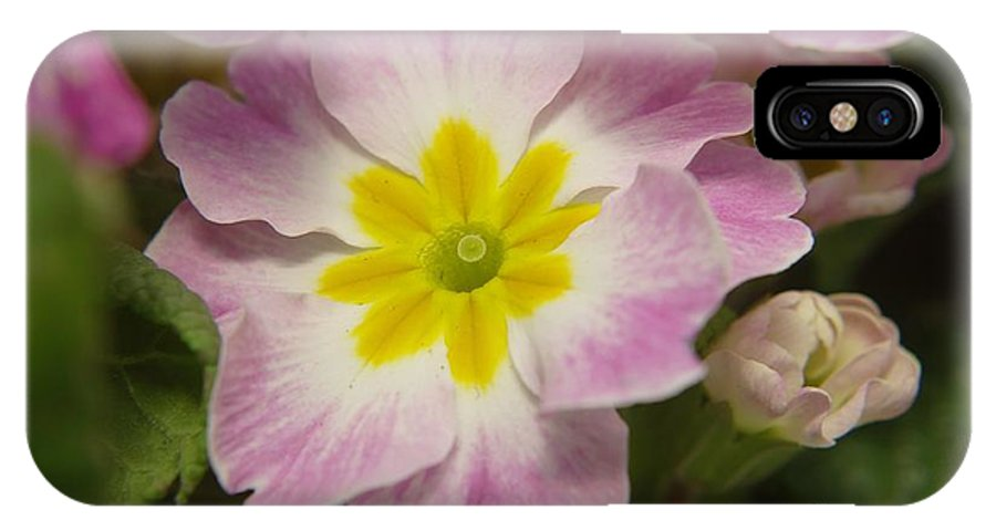 Flowers IPhone X Case featuring the photograph A Shy Flower by Jeff Swan