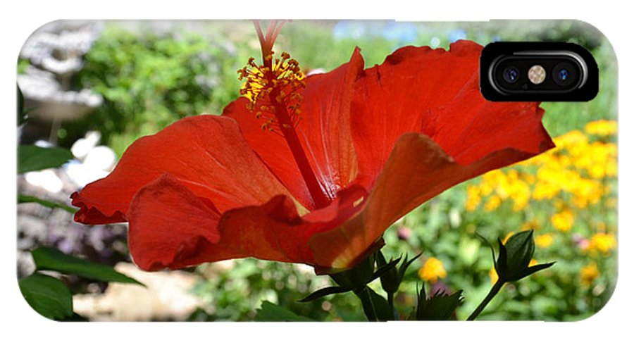 Hibiscus IPhone X Case featuring the photograph A Side Of Hibiscus by Wanda J King