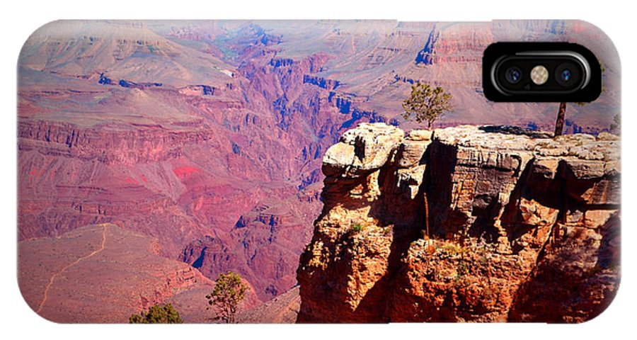 Grand Canyon IPhone X Case featuring the photograph A Tree And The Canyon by Tara Turner