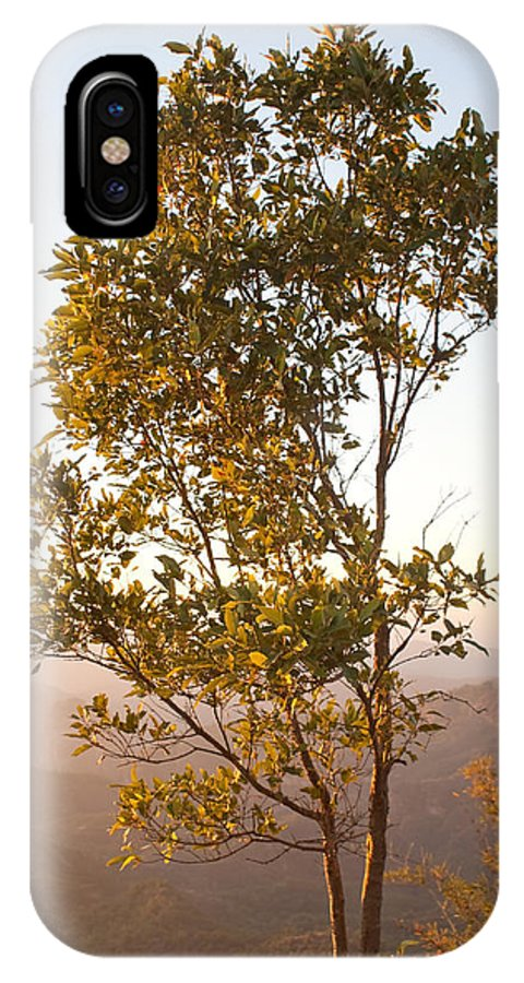 Tree IPhone X Case featuring the photograph A Tree Outlined By The Rays Of The Setting Sun At Pachmarhi by Ashish Agarwal