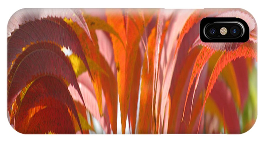 Abstract Autumn IPhone X Case featuring the photograph Abstract Autumn by Debra   Vatalaro