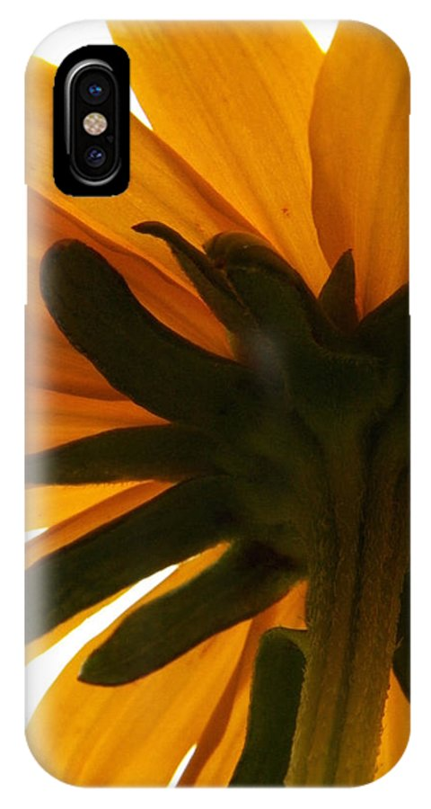 Flowers IPhone X Case featuring the photograph Abstract Black Eyed Susan II by Corinne Elizabeth Cowherd