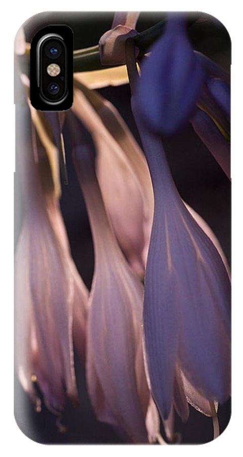 Husta IPhone X Case featuring the photograph Afterglow Of Hosta by Douglas Barnett