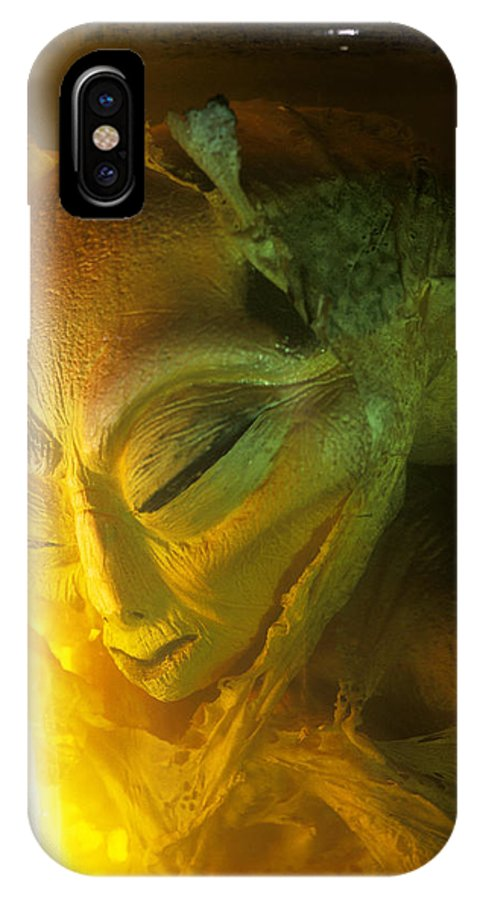 Specimen IPhone X / XS Case featuring the photograph Alien by Detlev Van Ravenswaay