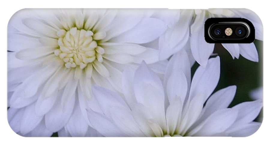 Always A Bridesmaid IPhone X / XS Case featuring the photograph Always A Bridesmaid by Barbara S Nickerson