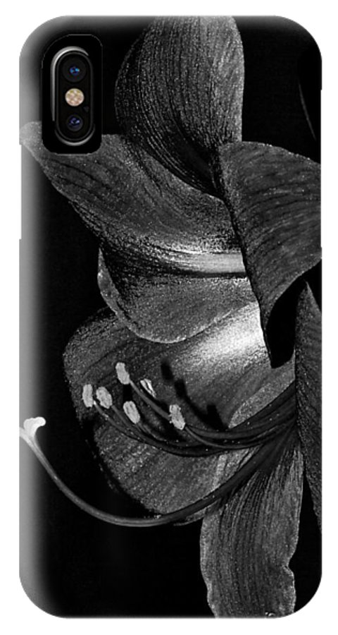 Amaryllis IPhone X Case featuring the photograph Amaryllis Flower Side View Black And White by Phyllis Denton