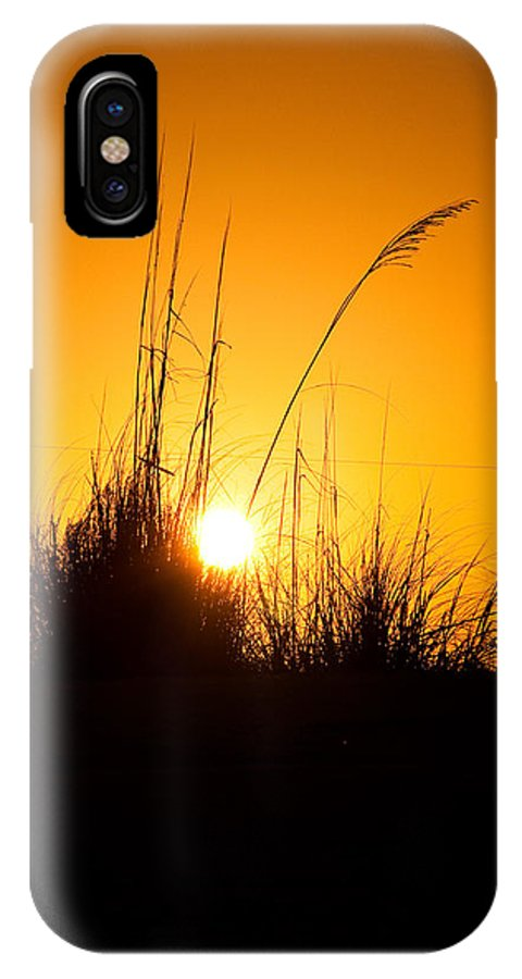 Sea Oats IPhone X Case featuring the photograph Amber Waves by Christine Stonebridge