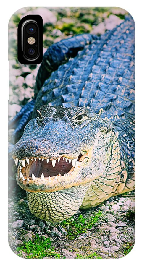 Close-up IPhone X Case featuring the photograph American Alligator by Rudy Umans